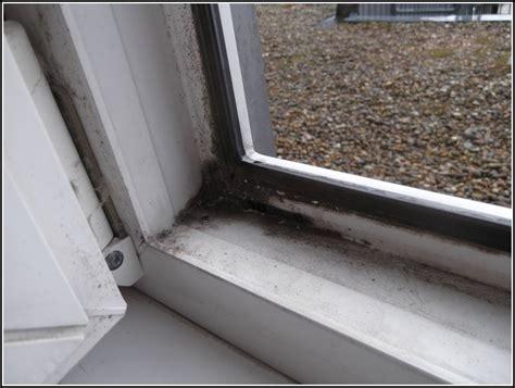 Schimmel Im Schlafzimmer by Schimmel Im Schlafzimmer Am Fenster Schlafzimmer House