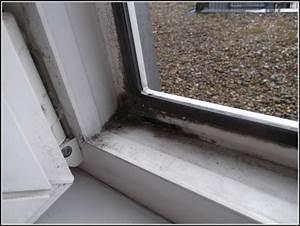 Schimmel Am Fenster Entfernen : schimmel im schlafzimmer am fenster download page beste wohnideen galerie ~ Whattoseeinmadrid.com Haus und Dekorationen