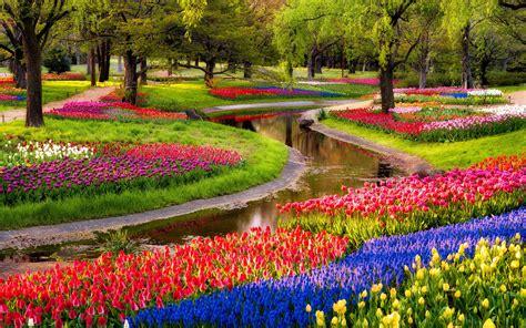 organizzare un giardino 5 consigli per organizzare un giardino fiorito lombarda flor