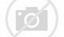 如何评价吴刚,王劲松,任达华等领衔主演的电视剧《破冰行动》? - 知乎
