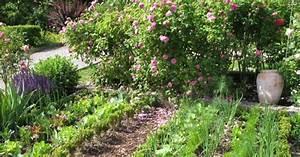 gemuseanbau in mischkultur mein schoner garten With garten planen mit zwiebelblumen zimmerpflanzen