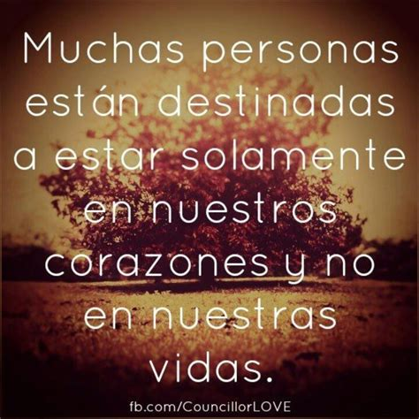 friendship quotes  spanish image quotes  hippoquotescom