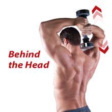 Amazon.com : Shake Weight Men's- 5lb Arm Firming, Muscle