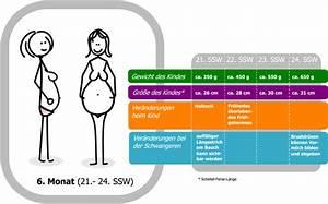 Ssw Berechnen Nach Es : 22 schwangerschaftswoche 22 ssw entwicklung des kindes im mutterleib gewichtszunahme ~ Themetempest.com Abrechnung