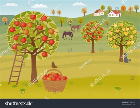 apple orchard illustration harvest a crop of apples in a highland orchard a vector