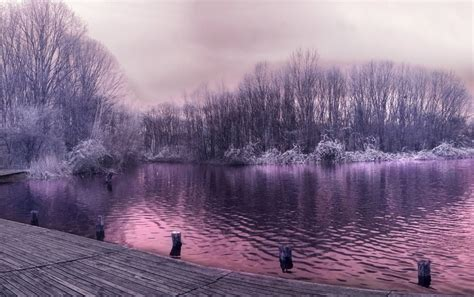 Pretty Purple Lake Trees Jetty Wallpapers  Pretty Purple