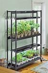 Best 25+ Grow lights ideas on Pinterest | Grow lights for indoor gardening lights