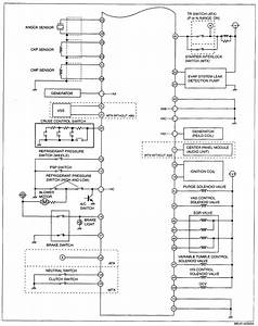 Diagram  1983 Mazda 626 Service Shop Repair Set Oem Service And The Wiring Diagrams Highlights