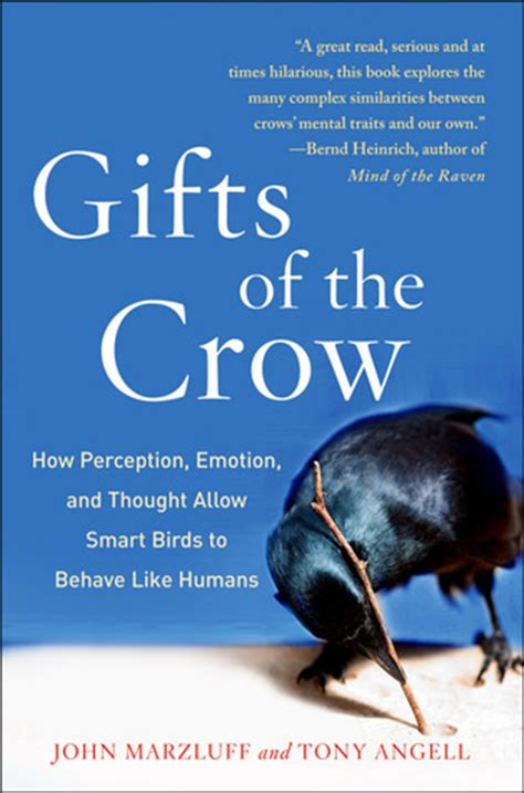 gifts   crow  perception emotion  thought