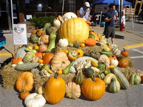 Central Illinois Pumpkin Patches by Central Illinois Life Pumpkin Patches