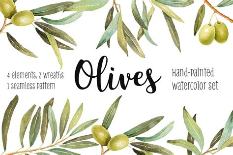 olives watercolor illustration set illustrations