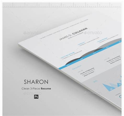 Resume Infographic Creator by 17 Best Ideas About Cv Maker On Resume