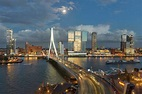 Rotterdam: Leave behind the quaint Holland for a preview ...