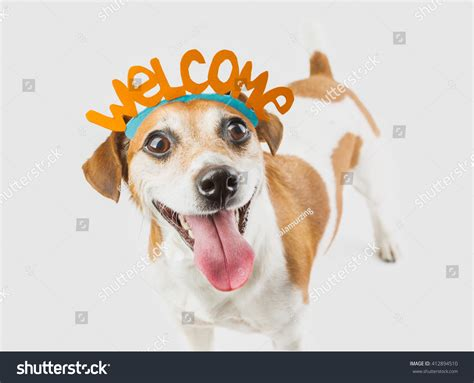 Image result for Welcome' Dog