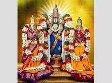 koil alwar thirumanjanam seva Tirumala Activities