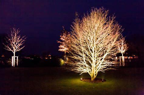 Gartenbeleuchtung Baum   afdecker.com