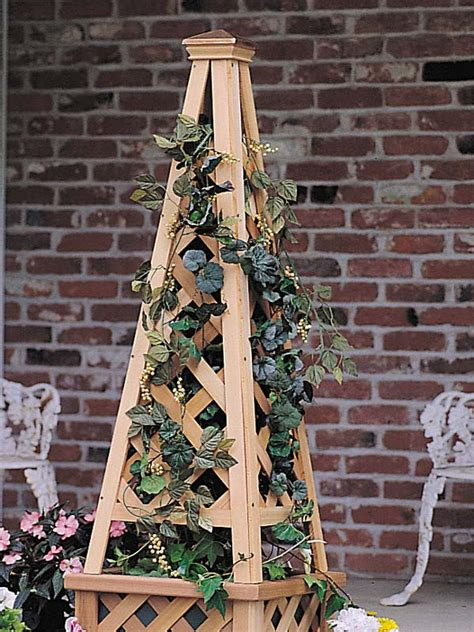 wooden garden pyramid trellis plans diy   wood