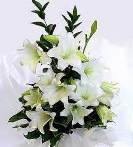 paperwhite flowers birthday flowers flowers magazine