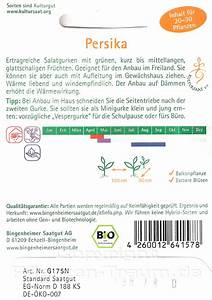 Aufleitung Berechnen : persika freilandgurke persika samen cucumis sativus l bio samen bingenheimer demeter ~ Themetempest.com Abrechnung