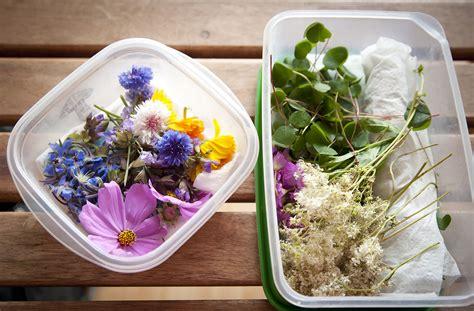 cuisiner avec les fleurs les fleurs comestibles pour une cuisine colorée et pleine