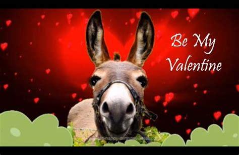 donkeys valentine song      valentine