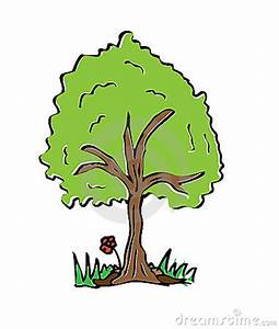 Cartoon Drawing Tree With Color Stock Photography - Image ...