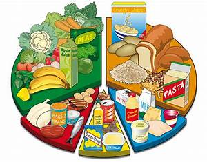 Myplate Food Diagram