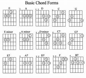 Guitar Chord Guide Beginner
