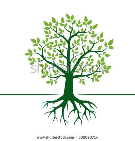 tree trunk and roots template green vector tree roots vector illustration stock vector