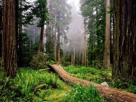 impresionantes parques nacionales por el mundo