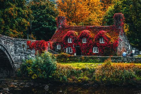 Animated Autumn Wallpaper - 1000 amazing autumn wallpaper photos 183 pexels 183 free