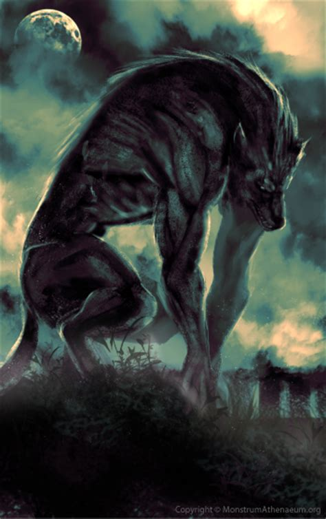 Real Scary Wolf Wallpaper by Vs A Marine Squad Battles Comic Vine