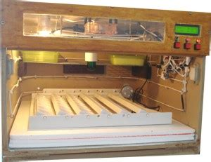 Diy Automatic Egg Incubator