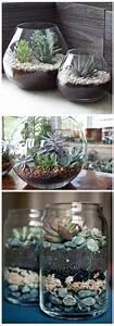 Sukkulenten Im Glas Pflanzen : 25 best ideas about aquarium einrichten auf pinterest aquarium beleuchtung lounge decor und ~ Eleganceandgraceweddings.com Haus und Dekorationen