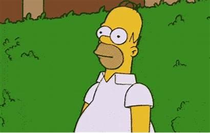 Homer Meme Simpsons Hiding Bush Someone 1024