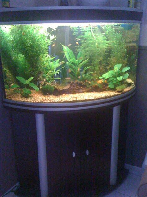 vends aquarium aquatlantis corner 100 80 somme