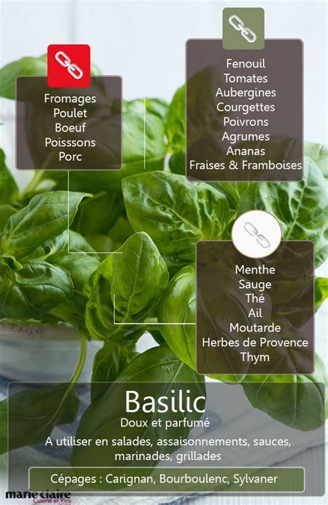 basilic cuisine comment utiliser le basilic en cuisine cuisine et vins