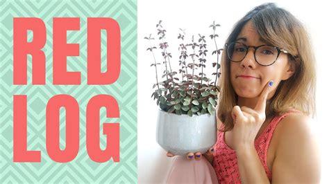 red log plant care peperomia verticillata youtube