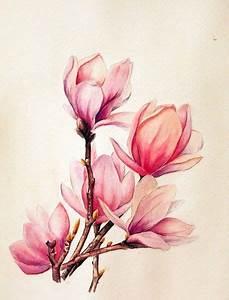 Aquarell Blumen Malen : aquarell idee hintergrund pinterest ~ Frokenaadalensverden.com Haus und Dekorationen