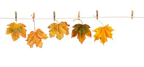 Einfache Herbstdeko Für Fenster by Herbstdeko Selber Machen 6 Diy Ideen F 252 R Zuhause
