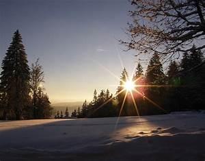 Sonne Im Winter : sonne in winterlichen tannen foto bild jahreszeiten ~ Lizthompson.info Haus und Dekorationen