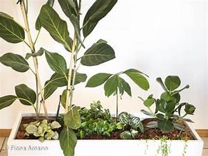 Grüne Kügelchen In Blumenerde : gro er pflanztrog leicht clever und sparsam bepflanzt ~ Lizthompson.info Haus und Dekorationen