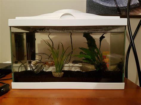 entretien aquarium eau froide quelques liens utiles