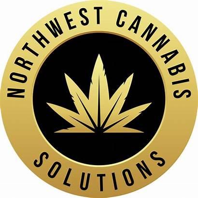Cannabis Northwest Solutions Marijuana Nwcs Recreational Washington