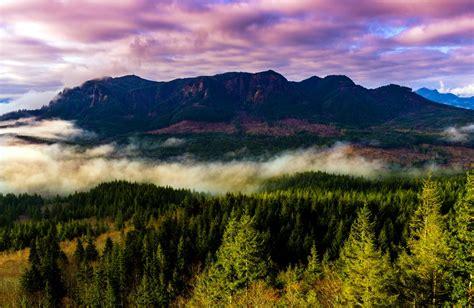 united states oregon mountain fog forest tree landscape hd