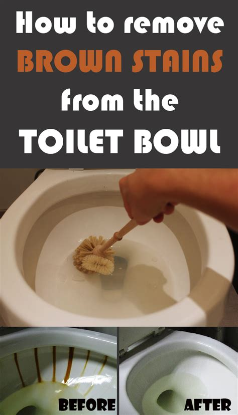 How To Remove Brown Stains From The Toilet Bowl Cleaning