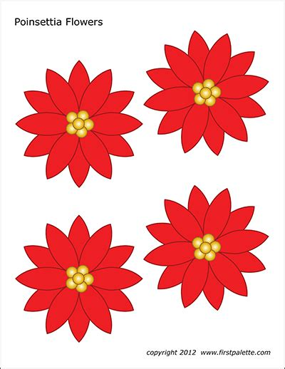 poinsettia flowers  printable templates coloring