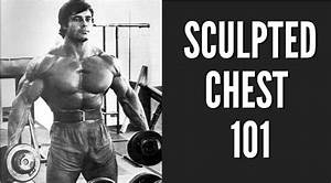 The Ultimate Guide On How To Build That Big Sculpted