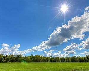 Clear, Sky, On, A, Sunny, Day, Cloud, Field, Tree, Nature