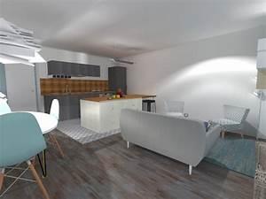 Cuisine salon 20m2 Cuisine en image